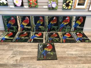 Parrot paintings!